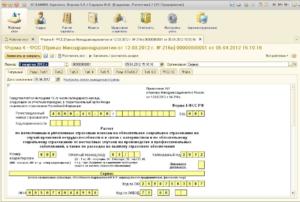 1С: КАМИН. Интерфейс программы 2